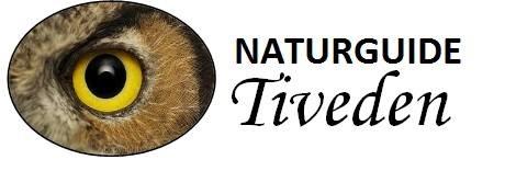Naturguide Tiveden